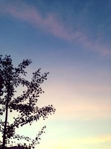 Evening sky in Romare Bearden Park